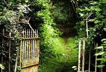 Gardens: Paths / A  beautiful path to entice you on a journey through the garden.