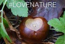 Fall natural beauty / In autunno la natura ci emoziona con i suoi meravigliosi colori. lasciamoci ispirare per un makeup naturale ed ecobio in sintonia con la natura!