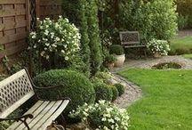 Garden design....