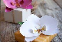 Paper Flowers / Handmade Florals