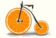 orange & bike / Fahrrad, Orangen, orange, bike