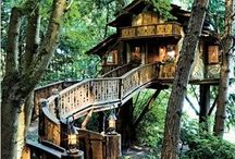 Tree houses: longlife dream I still believe in.❤️