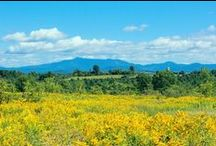 Summer in Vermont / Summer destinations in Vermont that attract visitors from far and wide. Lake Champlain glistens between the awesome Green Mountains of Vermont and the Adirondacks of New York.