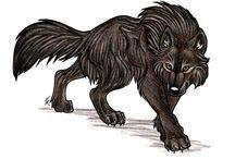 Anime Wolves (rajzolnivalók) / Anime wolves...