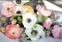 FLOWERS l BLOOMS / Beautiful Flowers, Blooms and Flower Styling Inspiration