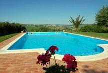 Fantastic Swimming Pools