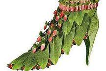 Zapatos Inspirados en Flores / Zapatos Inspirados en Flores