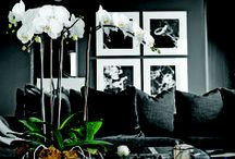 Living Room / Living Room Decor / by Cerise