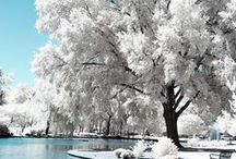 Winter/Tél / téli képek: