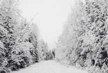 Winter & Holiday Ideas / Holidays & winter ideas / by Taylor