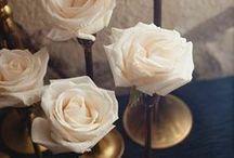 Wedding Ideas / by Alexandra Perez