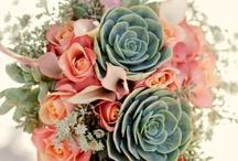 ♥ Wedding Ideas ♥