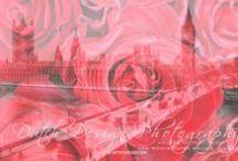 A23 | Double Exposure - Flowers & History / Big size double exposure art print since 2007, you can also buy this art as digital file. http://www.werkaandemuur.nl/nl/album/Flowers-amp-History---Double-Exposure/1616/7922/0   Ook digitale bestanden verkrijgbaar (om eigen afdruk) mee te maken € 450,- via info@artstudio23.com