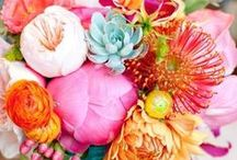 FLOWERS are always a good idea! / ... Earth laughs in FLOWERS :)