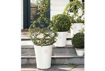 Outdoor Planters Ideas / Exquisite planters ideas