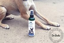 Pet Oral Care for Dogs and Cats / The Pet Pure collection helps you provide your dog or cat live a happy and healthy life. The products' organic ingredients like vitamin C and coconut oil naturally eliminate your pet's bad breath and remove plaque buildup. All Pet Pure products from Dr. Brite are made with love in the USA.