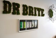 About Dr. Brite + HQ + Events