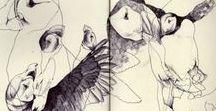 F I E L D N O T E S / field journals , sketchbooks, naturalist note books