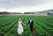 wedding photography / by Jessa Wiles
