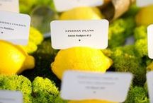 Place Cards + Escort Cards / by Caitlyn K