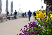 Strand & Promenade