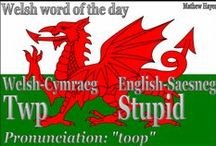 Wales, my Ancestors lived here. / by Elray Allen