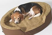 Heated Dog Beds / Heated Dog Beds, Mats and Pads. Heat is beneficial and soothing for active and aging dogs. Our heated dog beds and mats feature dual thermostats and are Vet recommended for year round use. They are comfy, safe and reliable!  / by CozyWinters