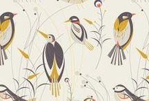 MyCurly Birds