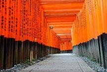 Made in Japan / Le meilleur du Japon : Zen, Ikebana, Food, Packaging, Architecture, Origami etc.