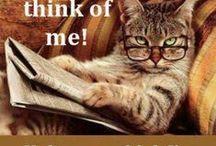 Humor...!!!!..my comfort zone..!!!
