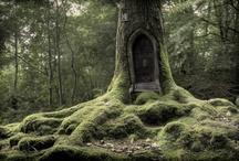 lovely green - alles, was grünt und blüht / Gestaltungsideen und einfach Schönes / by Fritzi Frey