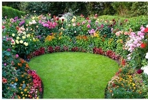"Gardens and Yards / ""If you have a garden and a library, you have everything you need."" 