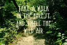 Nature - we