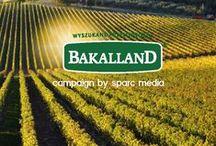 Bakalland / Sparc Media Ad Campaign for Bakalland