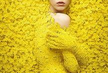 yellow / Vem sa att gult va fult? Yellow is the colour of sunshine!