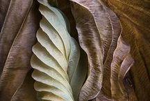 Zimt & Sandelholz / Das rötliche Braun des Zimtes und des Sandelholzes verbinden wir schnell mit seinen herben, süßlichen Aromen als Gewürz und Duft.Seine Wirkung ist beruhigend, mit einem eleganten Nebenton.