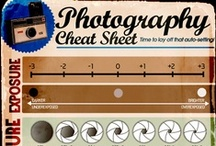 **Photography infographics** / Infographics about photography. A perfect match, don't you think?