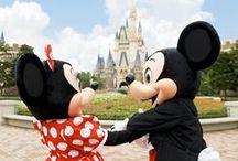 My Disney Obsession ❤