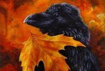 Ravens, Crows & Blackbirds - Artwork / by Brenda Clarke