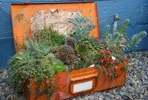 Garden - Creative Gardening Ideas