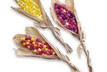 kukorica csuhé
