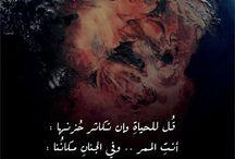 ¤ بالعربي الفصيح