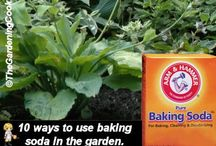 Garden Helpers / Garden helpers