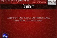 Capricorn & Taurus / Capricorn and Taurus zodiac signs