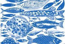 fish illustration / fish drawings and prints I love