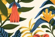 botanical illustration / beautiful drawings of plants, flowers etc...