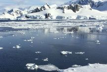 Polar: Antarctica and Southern Ocean / Mostly Antarctic from our first polar trip. Adding Arctic for our next.
