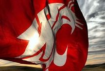 Wave The Flag / Ol' Crimson has been around the world and back!