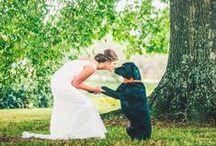 Wedding / Details & Planning
