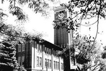 Traditions & History / Founded in 1890, WSU has an abundance of traditions and history.